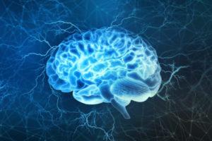 Améliorer son pouvoir de conviction en comprenant le fonctionnement du cerveau !